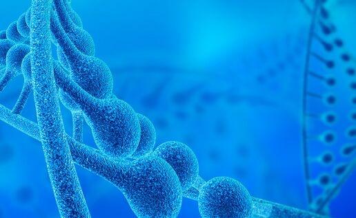 """诺奖得主最新研究:一种阻止细胞""""自杀""""的基因是免疫治疗耐药性关键"""