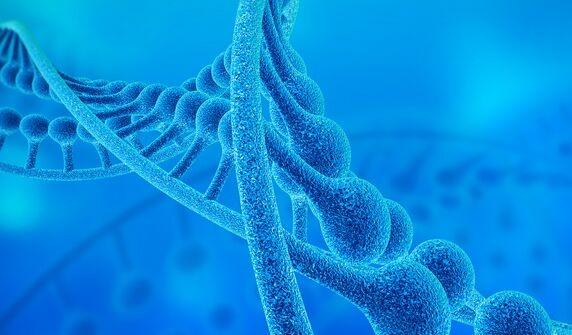 CRISPR基因编辑系统治疗恶性肿瘤取得重大突破 活体动物上彻底摧毁癌细胞