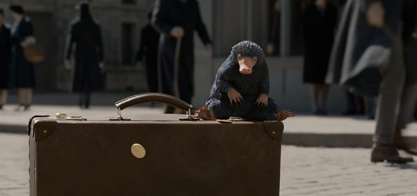《神奇动物:格林德沃之罪》定档11月16日北美同步 全面升级打造魔法奇观