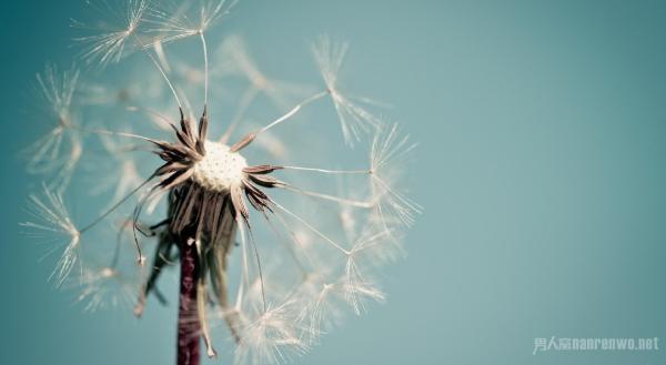 给生活加点理想和梦想!不断寻找人生的意义