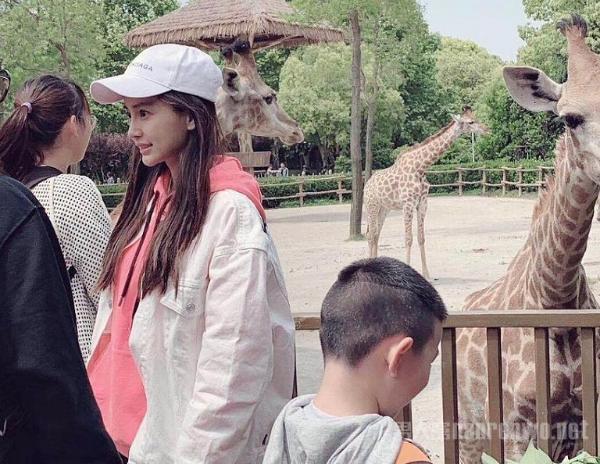 baby逛动物园 与粉丝亲切合影 笑容亲切大方!