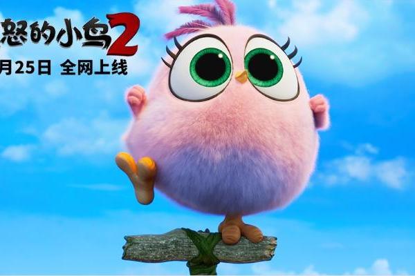 《愤怒的小鸟2》曝光独家番外短片 打开网页随时随地...