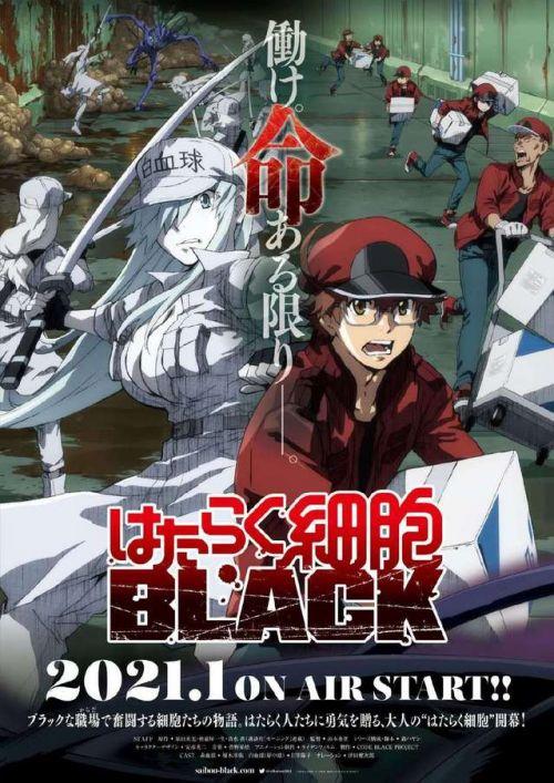 《工作细胞BLACK》动画将于2021年1月开播