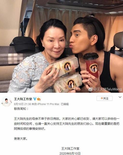王大陆母亲离世 脑干肿瘤昏迷救治无效享寿65岁
