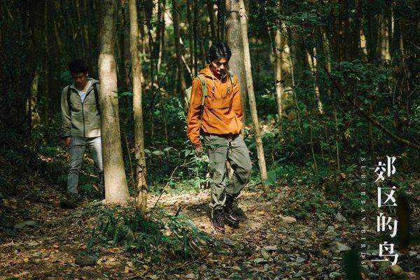 中国独立巨作《郊区的鸟》今天演员邓晶的第一部作品的发布令人期待
