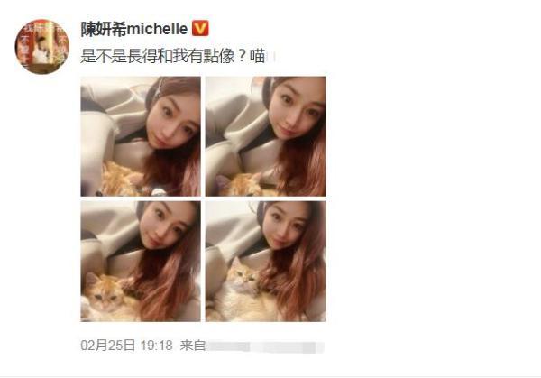 陈妍希抱着一只小橘猫自拍 大眼睛溜圆 神韵如猫