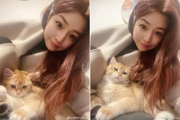 陈妍希抱小橘猫自拍 大眼睛溜圆神韵似猫