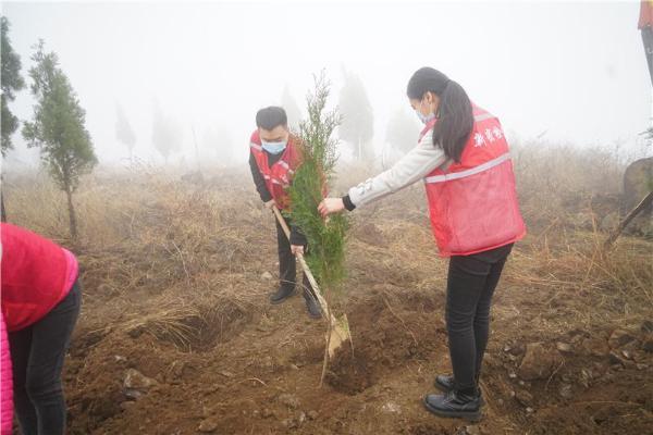"""播种""""绿色希望"""" 植出""""美好明天"""" 新密市人民检察院开展义务植树活动"""