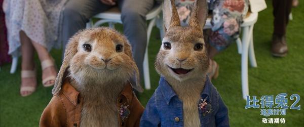 《比得兔2:逃跑计划》北美提档5月14日 兔头开启冒险奇遇
