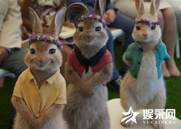 冒险喜剧电影《比得兔2:逃跑计划》5月14日于北美上映