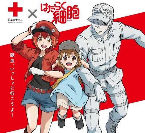 时隔14年央视再播日本动画 《工作细胞》传播免疫预防疾病等知识