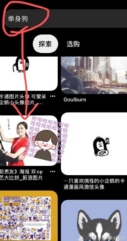 江疏影被单身狗素材冒犯到 网友:这位朋友真的太笋了!