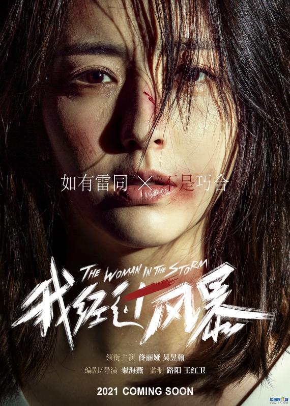 《我经过风暴》曝杀青海报 佟丽娅扎心演绎婚姻漩涡中的女人