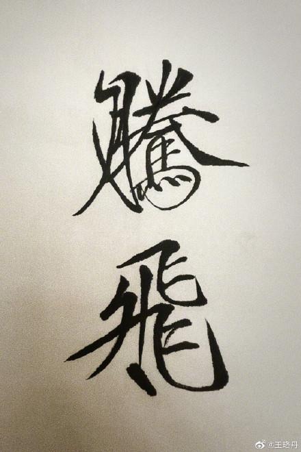 王珞丹手写腾飞致敬航空梦 见证国产大飞机翱翔天际