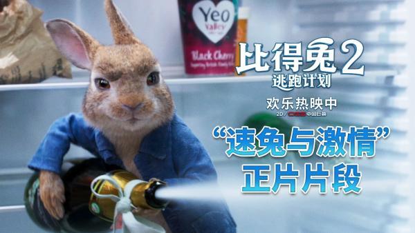 """《比得兔2:逃跑计划》曝""""速兔与激情""""片段 周末欢乐观影之选"""