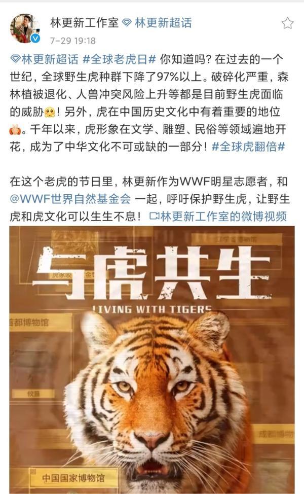 林更新为全球老虎日发声 呼吁拒绝消费虎制品