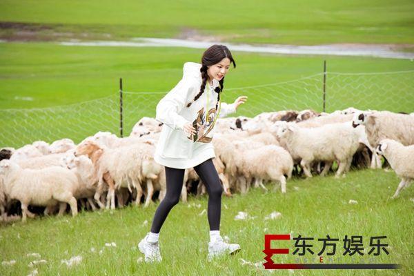 《极限挑战宝藏行》王彦霖化身抓羊高手 杨超越音波攻击震惊全场