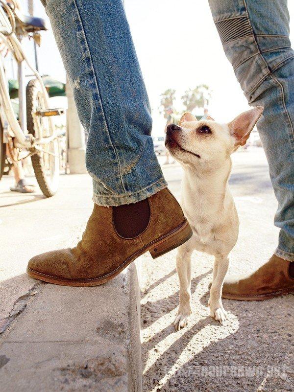 穿上切尔西靴 你就是这整条街上最靓的那个仔
