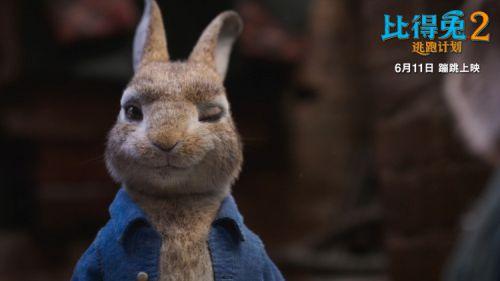 电影《比得兔2:逃跑计划》将映 如何实现满分特效