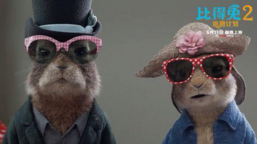 《比得兔2:逃跑计划》反派登场萌兔天团被套路 预售火热进行中