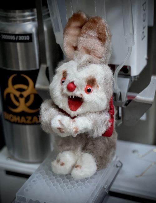 《蚁人3:量子狂热》开机拍摄 道具丑兔子重现片场