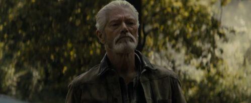 《阿凡达》上校演员史提芬·朗主演电影《屏住呼吸2》北美定档