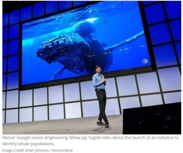 "AI造福人类!谷歌推""AI社会公益倡议""大赛 奖金高达2500万美元"