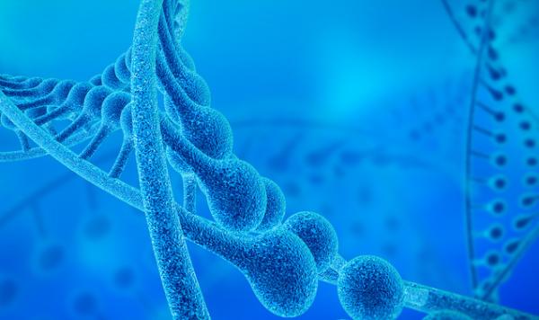 ACS Nano:检测DNA重排将更高效经济,及时诊断基因变异疾病成现实