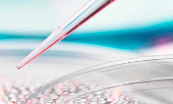 阻止衰老有理可依!《自然》:科学家发现抑制细胞死亡途径的新机制