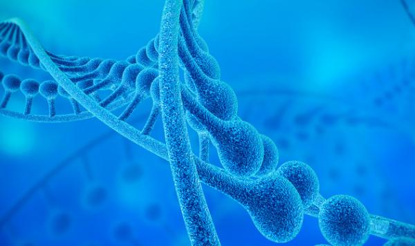 强强联手!《科学》:MIT和哈佛开发高分辨率技术,观察细胞基因表达