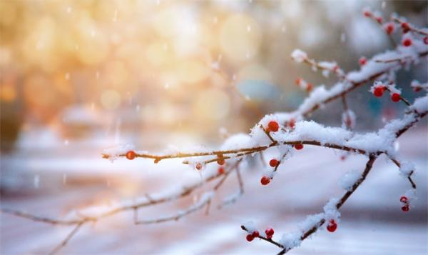 冷冷冷!全国近9成国土冷如钻冰箱,广东北部进入冷藏室