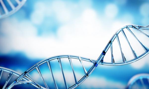 《科学》:利用RNA干扰寻找关键酶 人类离消除衰老又近了一步