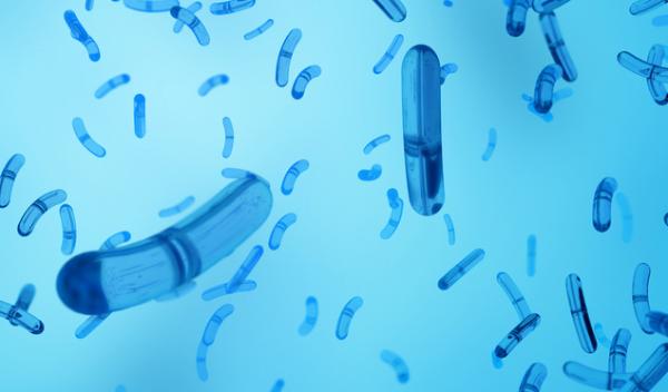 《细胞》:牛磺酸可保护人体免受细菌感染,还有望代替抗生素