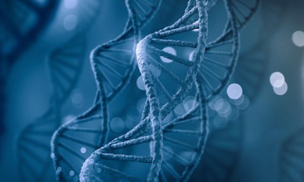 《分子细胞》:首次观察到RNA折叠,可推动RNA相关疾病疗法研究