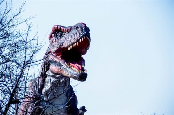 保存完好!英国4岁女童发现2.2亿年前恐龙脚印 位于低矮的海滩岩石上