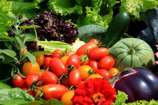 多因素影响蔬菜批发价上行 辣椒大葱等多个品种齐涨价