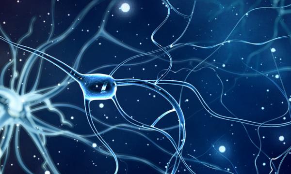 """《自然》子刊:深度神经网络作用""""+1"""",现在可以用来探索疾病成因"""