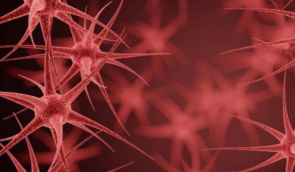 《科学》:利用语言模型分析病毒如何变异以逃避免疫系统