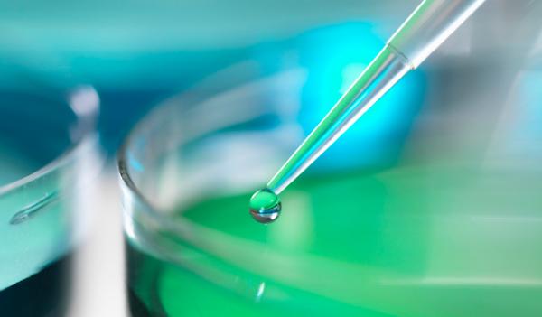 《科学进展》:具有再生能力的干细胞将问世,可用于组织修复
