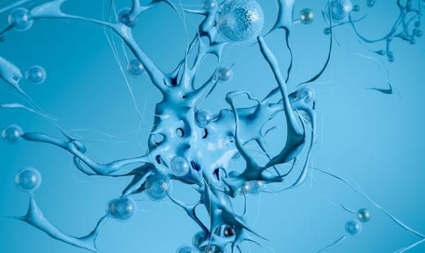 《美国国家科学院院刊》:超级计算机解决了肌动蛋白丝运动之谜 结果可以提高癌症治疗