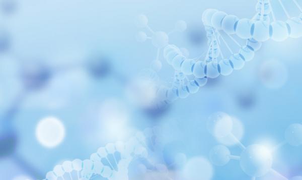 新发现分子信号开关,破解立早基因早期状态