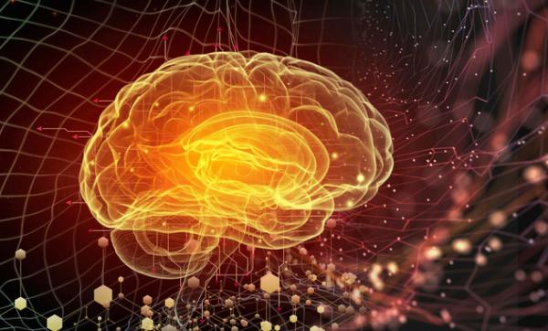 《自然》子刊:新方法可分析神经元活动产生的海量数据