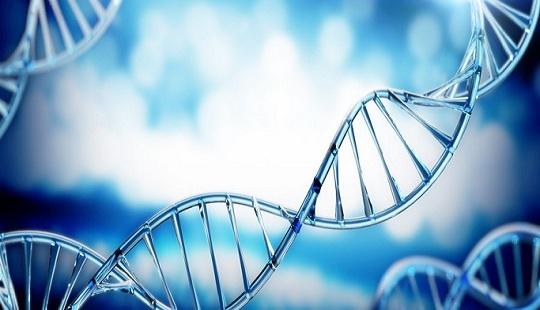 长期稳定!研究实现一次基因编辑治疗降低坏胆固醇3年,无明显不良变化