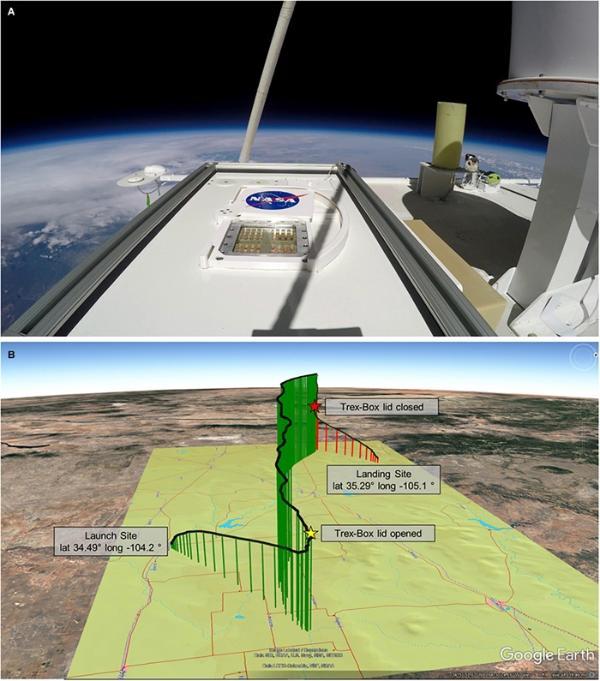 """地球上的生命可以在火星上生存!美国国家航空航天局的联合小组将真菌送往""""火星"""" 返回地球后仍有活动"""