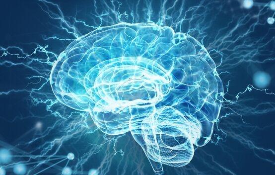 苹果中的天然化合物或刺激新脑细胞产生 有助于学习和记忆功能