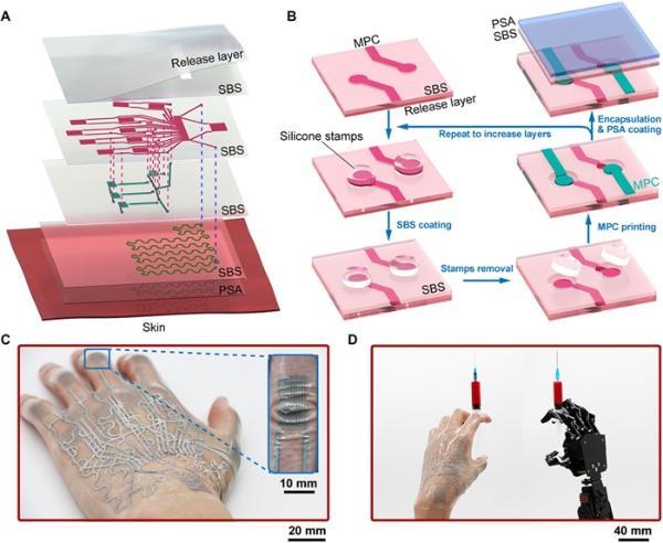 8倍延展!中国研究团队开发出新型电子纹身 1000次拉伸后传感灵活性依然惊人