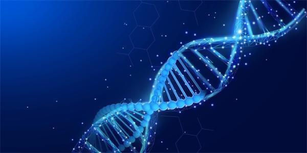 《基因组生物学》:北大团队发表单细胞数据整合新方法iMAP