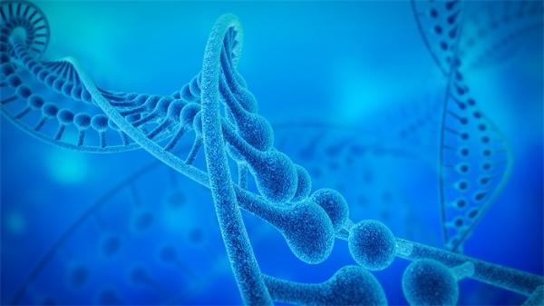 离不开:北大团队发现DNA同源重组过程的关键作用