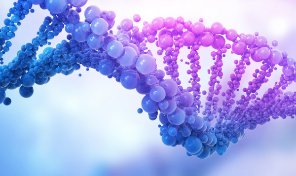 """新的""""通用容器""""可以将遗传物质输送到特定的组织 并有望进行脱氧核糖核酸缺陷治疗"""
