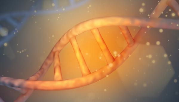 """《自然》:解密人体 麻省理工学院绘制了人类基因的""""地图"""""""